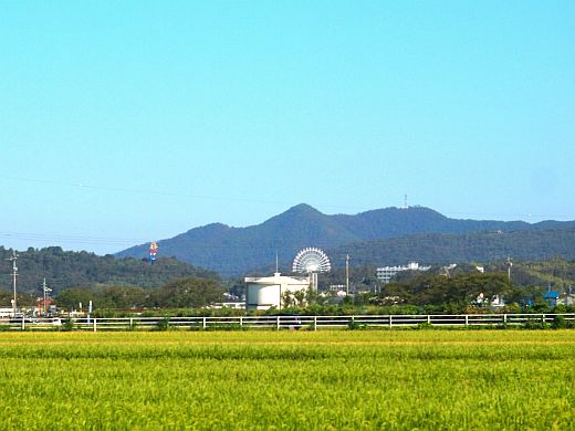 180919E-P2_Konishiroku Hexar75_27.jpg